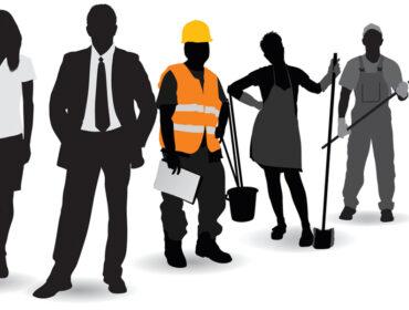 Каждый пятый мужчина и каждая шестая женщина в Нижегородской области работают по специальности
